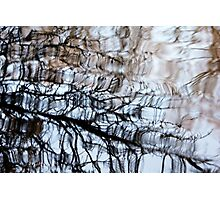 Reflecting On Winter Photographic Print