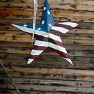 Americana Series:  Country Star  by Rebecca Bryson