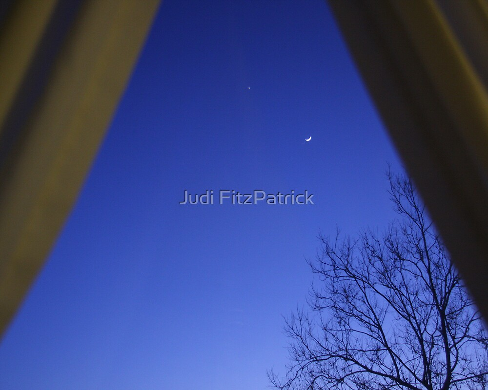 The View at Dusk by Judi FitzPatrick