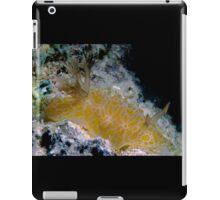 Goldspotted Halgerda, Great Barrier Reef iPad Case/Skin