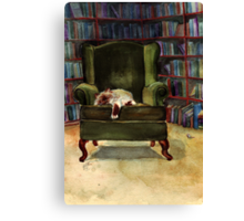 Monkey's Library Canvas Print