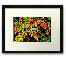 Autumn is a Painter #2, Haywards Heath, England Framed Print