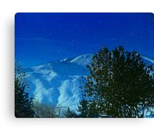 Washington Snow Canvas Print