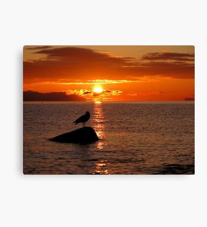 Check it out eh! Canvas Print