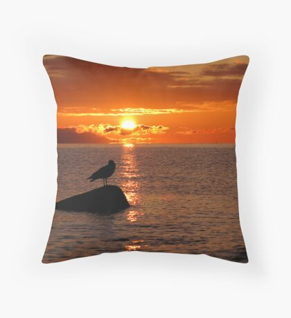 Check it out eh! Throw Pillow