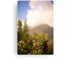 Of moutains and proteas Canvas Print