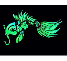 Green Koi Fish Photographic Print