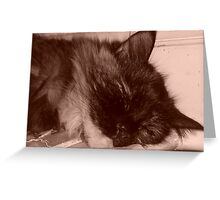 Tired Kitty in Sepia Greeting Card
