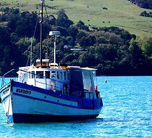 Fishing Trawer Akaroa, New Zealand by Sandra  Sengstock-Miller