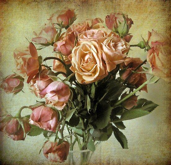 Waning Rose by Jessica Jenney