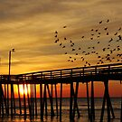 happy sunrise to you by ANNABEL   S. ALENTON