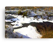 Brandsdale Beck - Yorkshire Dales. Canvas Print