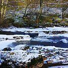 The Frozen River by Trevor Kersley