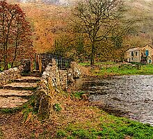 Bridge Over the River Wye by Mal Firth