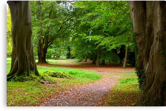The Leafy Path by Trevor Kersley
