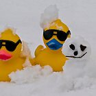 Snow ducks by Nala