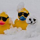 Snow ducks by Nala