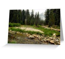 Sequoia Stream Greeting Card