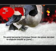 Clever Christmas Goose by Rebecca Bryson