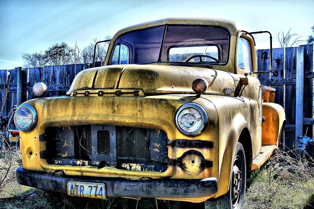Junk Yard Dodge by Stephen  Van Tuyl