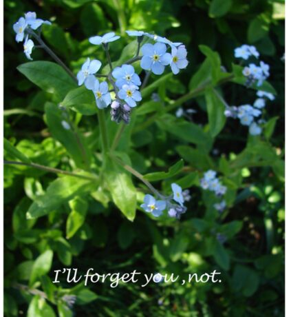 I'll Forget You Not Sticker