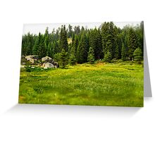 Sequoia Meadow Greeting Card
