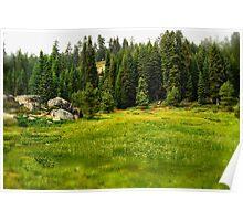 Sequoia Meadow Poster