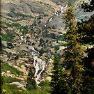 Sequoia Waterfall by HeavenOnEarth