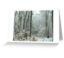 Snow Comes to the  Little Pond  Greeting Card