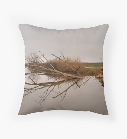 Symmetry Throw Pillow