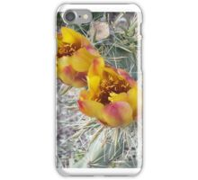 Cane Cholla Blooms iPhone Case/Skin