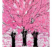 Trees Are Pink Oil Painting Photographic Print