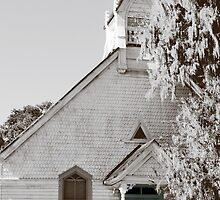Old Southern Church by Meg Magsig