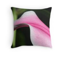 Arch Back Throw Pillow