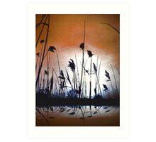 Tall wild grass.... Art Print