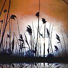 Tall wild grass.... by sendao