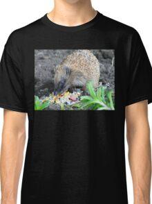 I'm A Hungry Hog - Hedgehog - NZ Classic T-Shirt