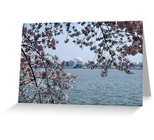 Jefferson Memorial at Cherry Blossom Time Greeting Card