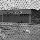 Coney Island No.3 by maxwell78