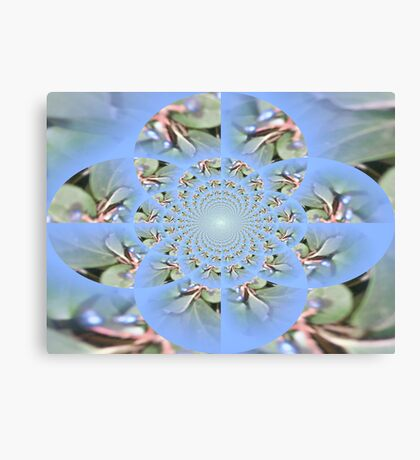 Natural Groove Canvas Print