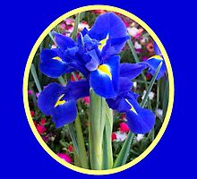 Blue Irises by Eleanor Wylie