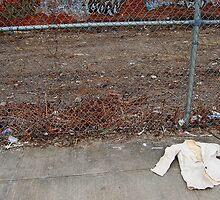 Coney Island No.14 by maxwell78