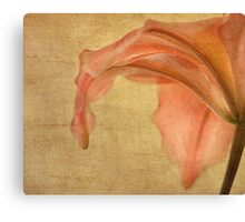 Consider The Lilies Canvas Print