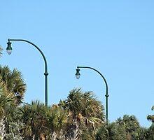 Double De-Light! by Donna Adamski