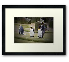 March of the Penguins Framed Print
