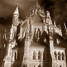 Gothic View of the  Library of Parliament by Max Buchheit