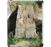 Little wooden bridge iPad Case/Skin