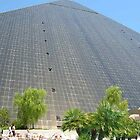Luxor view from the pool in Las Vegas by Debbi Tannock