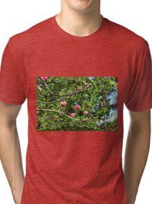 Shaving Brush Tree 6 Tri-blend T-Shirt
