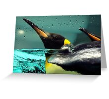 Come back Pingu! Greeting Card